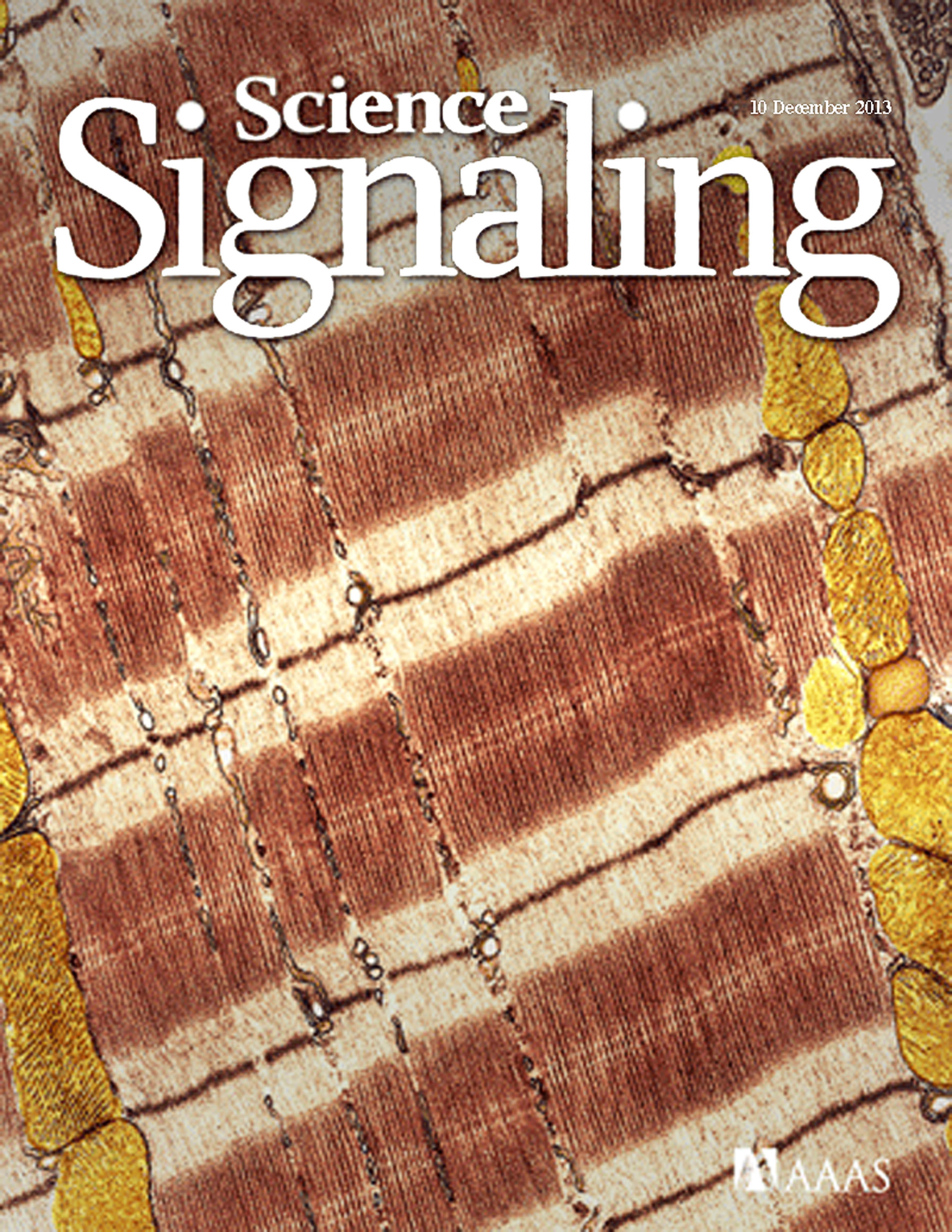 Science Signaling December 2013