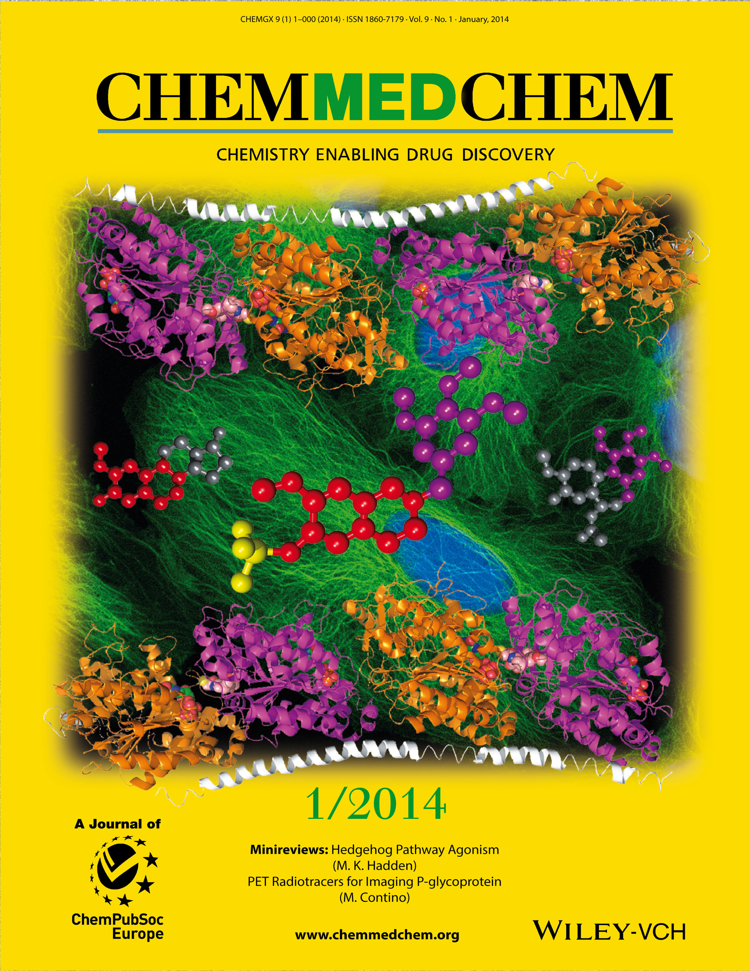 CHEMMEDCHEM January 2014