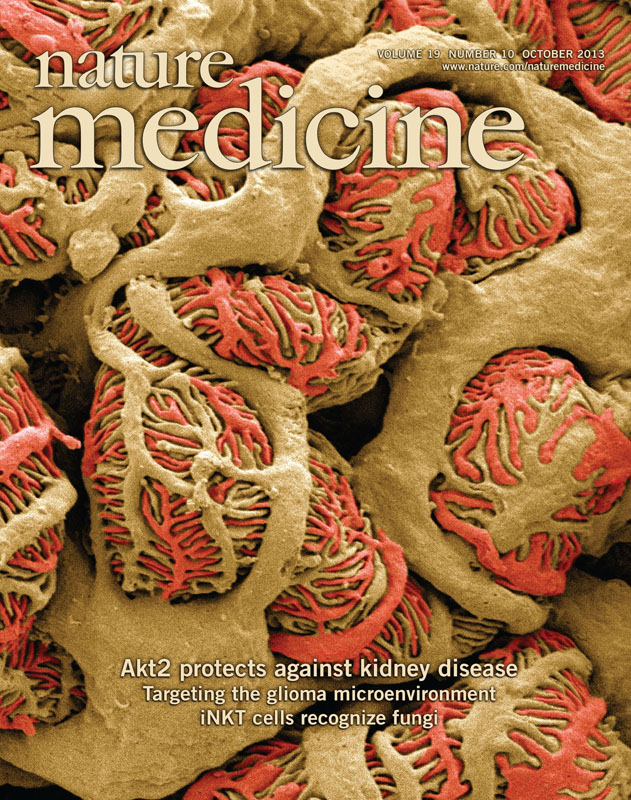 Nature Medicine cover October, 2013