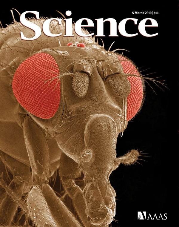 Science cover March 2010