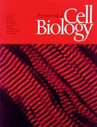 Cell Biology Cover 1991