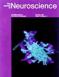 Neuroscience Cover 1993